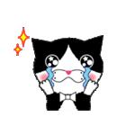 男爵猫のバロン基本動作編~文字なし~
