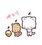 猫と柴犬と時々ひよこ 日常編(個別スタンプ:3)