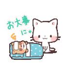 猫と柴犬と時々ひよこ 日常編(個別スタンプ:14)