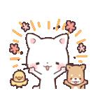 猫と柴犬と時々ひよこ 日常編(個別スタンプ:20)