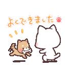 猫と柴犬と時々ひよこ 日常編(個別スタンプ:24)