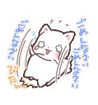 猫と柴犬と時々ひよこ 日常編(個別スタンプ:38)