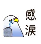 せきせいいんこ! [Ver3](個別スタンプ:06)