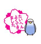 せきせいいんこ! [Ver3](個別スタンプ:14)