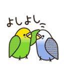 せきせいいんこ! [Ver3](個別スタンプ:20)