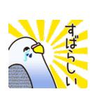せきせいいんこ! [Ver3](個別スタンプ:24)