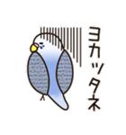 せきせいいんこ! [Ver3](個別スタンプ:31)