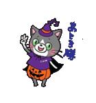Hiroshima Cat 6 秋(個別スタンプ:21)