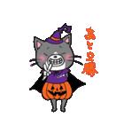 Hiroshima Cat 6 秋(個別スタンプ:22)