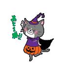 Hiroshima Cat 6 秋(個別スタンプ:23)
