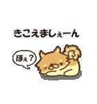 ぽめまるくん(個別スタンプ:27)