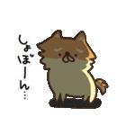 ぽめまるくん(個別スタンプ:34)