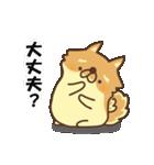 ぽめまるくん(個別スタンプ:38)