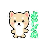 わんちゃん!!(個別スタンプ:01)