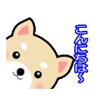 わんちゃん!!(個別スタンプ:04)