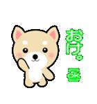 わんちゃん!!(個別スタンプ:08)