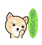 わんちゃん!!(個別スタンプ:21)