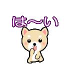 わんちゃん!!(個別スタンプ:23)