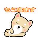 わんちゃん!!(個別スタンプ:25)