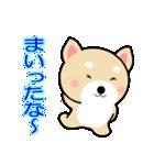 わんちゃん!!(個別スタンプ:31)