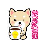 わんちゃん!!(個別スタンプ:32)