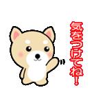 わんちゃん!!(個別スタンプ:33)
