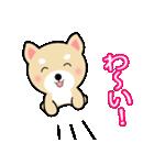 わんちゃん!!(個別スタンプ:40)