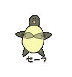 またまた亀君(個別スタンプ:01)