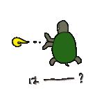 またまた亀君(個別スタンプ:36)