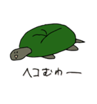 またまた亀君(個別スタンプ:38)