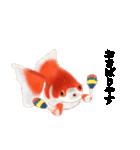 リアル金魚【京都弁】(個別スタンプ:11)