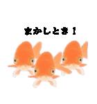 リアル金魚【京都弁】(個別スタンプ:12)