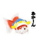 リアル金魚【京都弁】(個別スタンプ:15)