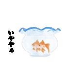 リアル金魚【京都弁】(個別スタンプ:16)