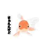 リアル金魚【京都弁】(個別スタンプ:25)