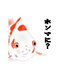 リアル金魚【京都弁】(個別スタンプ:33)