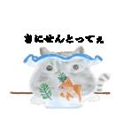 リアル金魚【京都弁】(個別スタンプ:38)