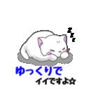 ぷにぷににゃんこ【敬語あいさつ編】(個別スタンプ:20)