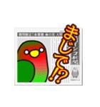 こざくらいんこ [Ver6](動く・あいづちNo2)(個別スタンプ:19)