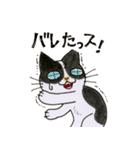 犬マユ単行本購入感謝スタンプ(石塚2祐子)(個別スタンプ:37)