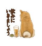さすが!柴犬(気が利く言葉編)(個別スタンプ:06)