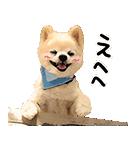犬の俊介くん(個別スタンプ:02)