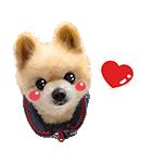犬の俊介くん(個別スタンプ:08)