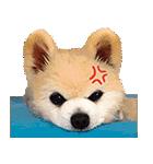 犬の俊介くん(個別スタンプ:39)
