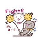 応援する猫、がんばる猫(個別スタンプ:04)