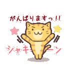 応援する猫、がんばる猫(個別スタンプ:13)