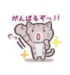 応援する猫、がんばる猫(個別スタンプ:14)