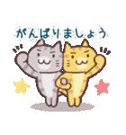 応援する猫、がんばる猫(個別スタンプ:15)