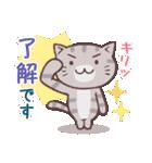 応援する猫、がんばる猫(個別スタンプ:16)