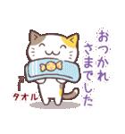 応援する猫、がんばる猫(個別スタンプ:18)